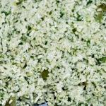 Ryż z ziołami